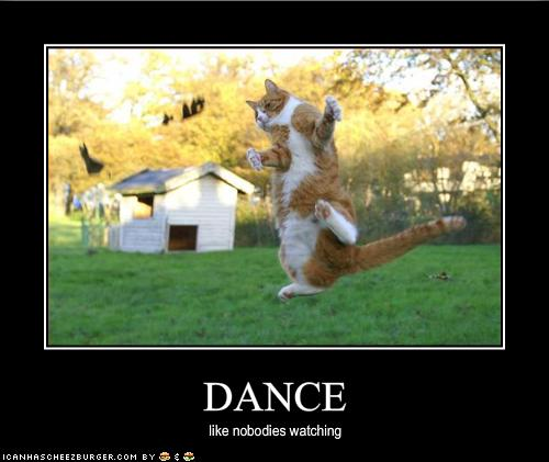 funny-pictures-cat-dances-like-nobody-is-watching